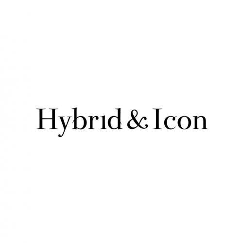 Hybrid & Icon